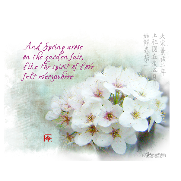 Spring-quote-cherry-blossom