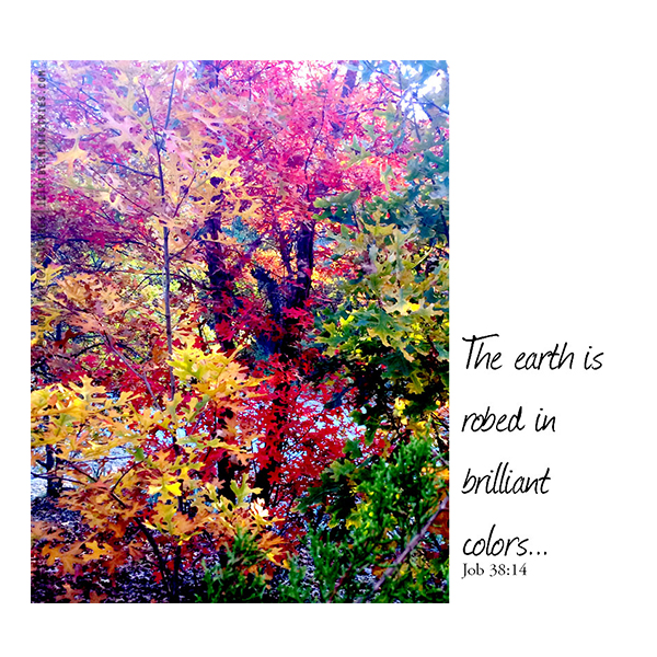 The-earth-is-robed