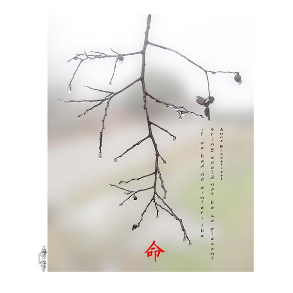 Vertical-branch-ice-blossom-kanji
