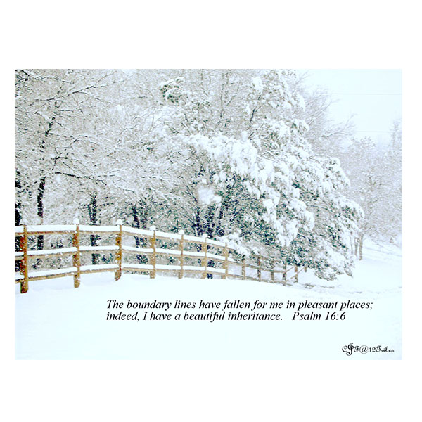 upwards-fence-in-winter